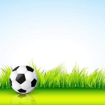 Ballon de foot sur l'herbe
