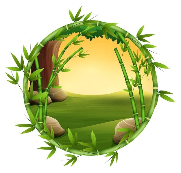 Bambous dans la nature du cadre