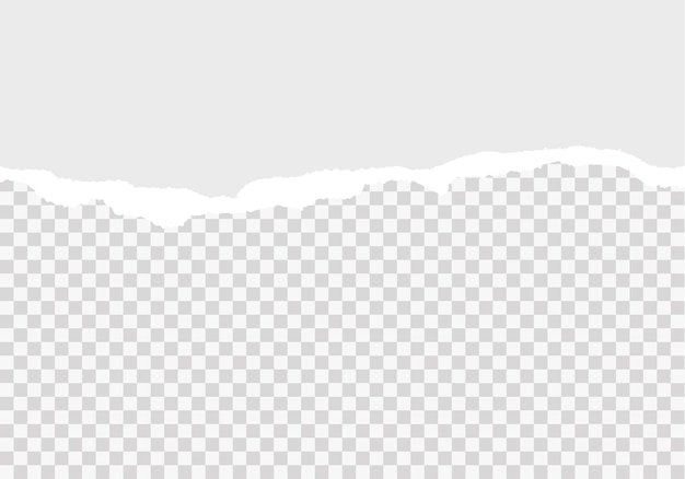 Bandes de papier déchiré blanc papier déchiré réaliste sur fond transparent horizontalement