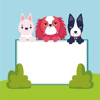 Bannière d'animaux de compagnie de chiens