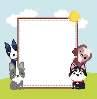 Bannière d'animaux mignons