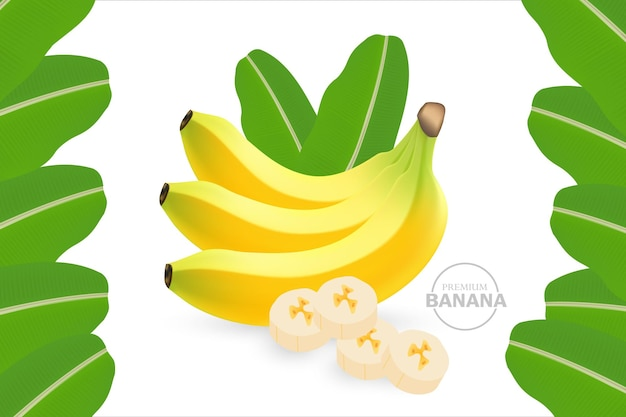 Bannière de banane réaliste avec cadre de feuilles