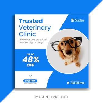 Bannière de clinique vétérinaire bleue premium pour animaux de compagnie publication sur les réseaux sociaux modèle instagram flyer carré animal