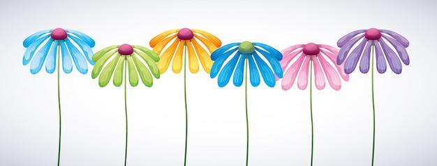 Bannière colorée de fleurs
