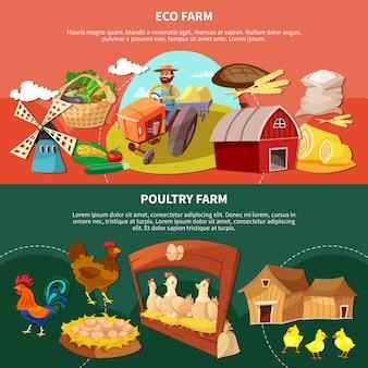 Bannière de dessin animé de couleur de deux fermes sertie d'illustration de descriptions de ferme écologique et avicole