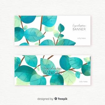 Bannière d'eucalyptus aquarelle