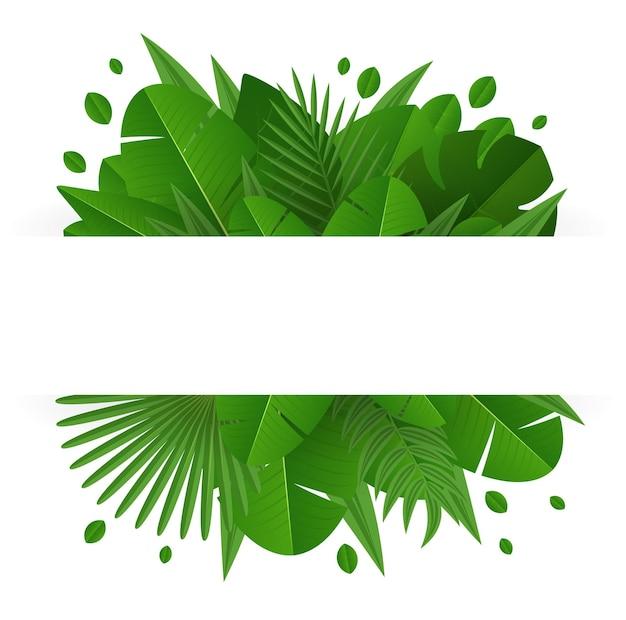 Bannière avec des feuilles tropicales