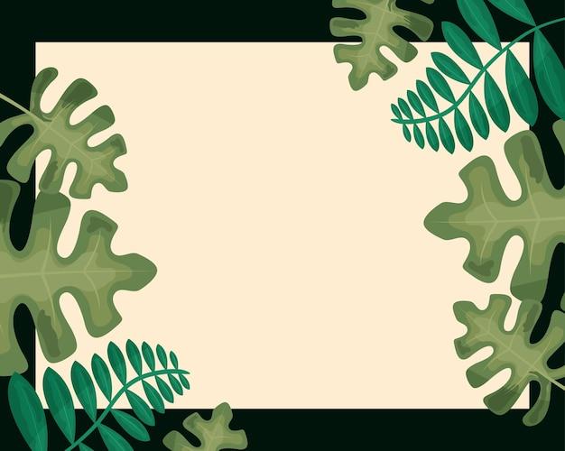 Bannière de feuilles tropicales