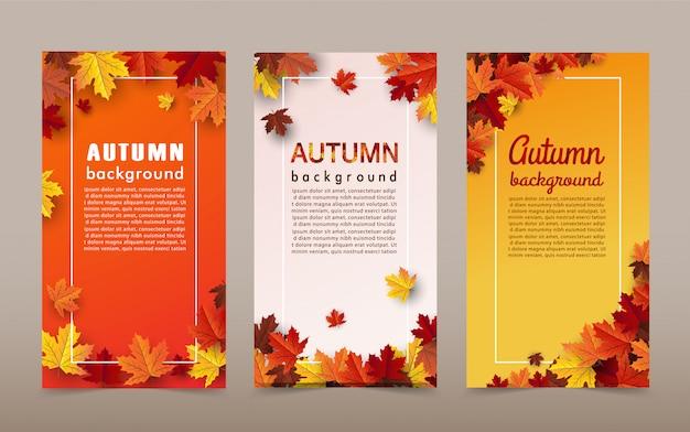 Bannière de fond feuille d'érable automne