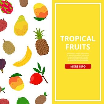 Bannière de fruits tropicaux. informations sur la nourriture fraîche, flyer de vecteur de fruits asiatiques ou africains