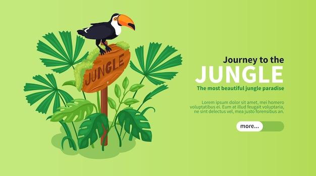 Bannière horizontale de jungle isométrique avec toucan