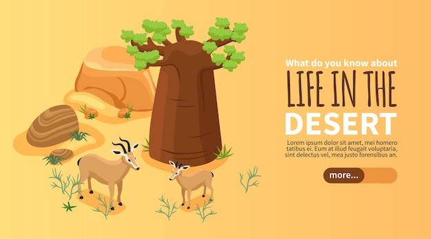 Bannière isométrique avec paysage désertique et deux gazelles