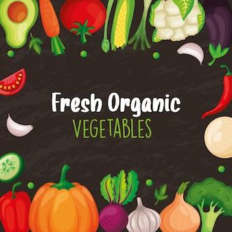 Bannière de légumes pour la boutique du marché. illustration vectorielle