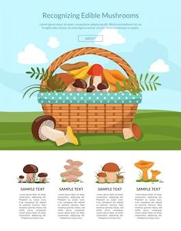 Bannière page d'atterrissage aux champignons de dessin animé