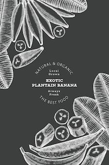 Bannière de plantain de style croquis dessinés à la main