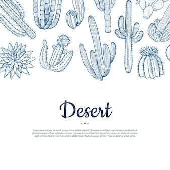 Bannière de plantes cactus sauvages dessinés à la main