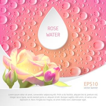 Bannière rose carrée avec des roses et des gouttes