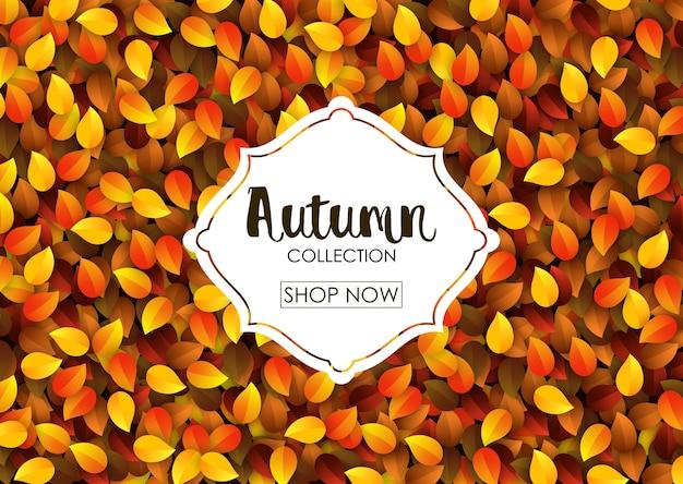 Bannière de vente collection automne
