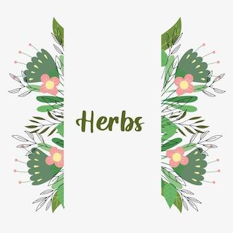 Bannière verticale d'herbes