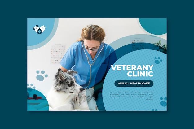 Bannière vétérinaire