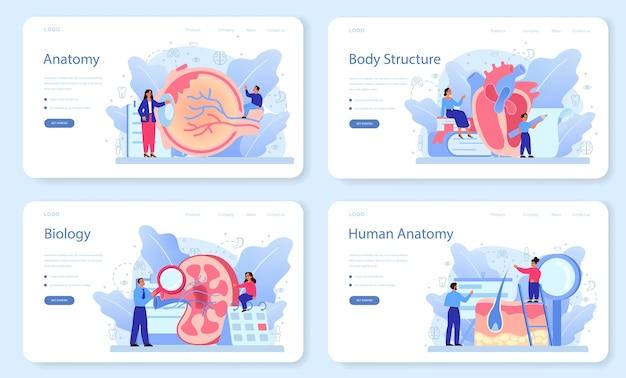 Bannière web de sujet scolaire d'anatomie ou ensemble de pages de destination. étude d'organes humains internes. concept d'anatomie et de biologie. système du corps humain.