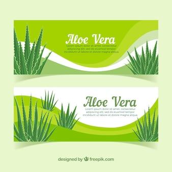 Bannières abstraites avec aloe vera