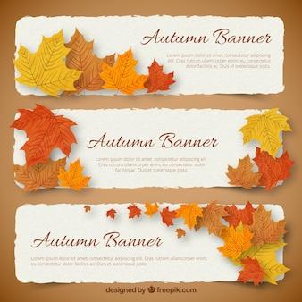 Bannières d'automne