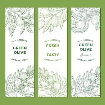 Bannières de branches d'olivier