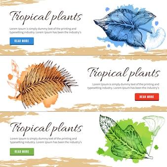 Bannières dessinées à la main de plantes tropicales