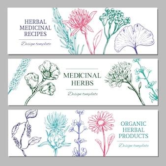 Bannières horizontales d'herbes médicinales avec différentes épices saines biologiques