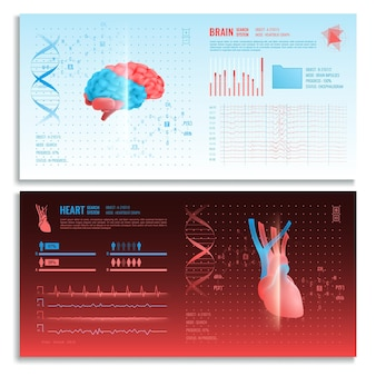 Bannières horizontales d'interface médicale avec système de recherche d'images réalistes cœur et cerveau et éléments hud