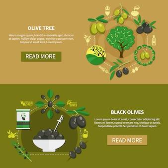 Bannières horizontales d'olivier