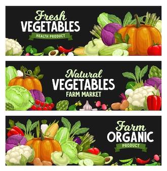Bannières de légumes, légumes du marché agricole, récolte biologique. ail, poivron et potiron sains naturels, chou-fleur et artichaut végétarien, pomme de terre et poivron, chou brocoli et courgettes