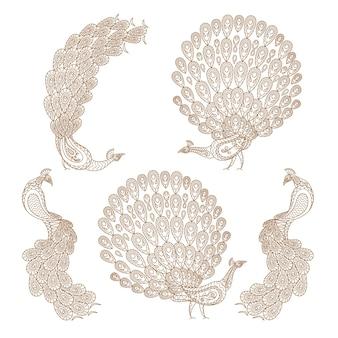 Barbe de paon dans le style indien mehndi. illustration vectorielle de paon mehndi dessinés à la main