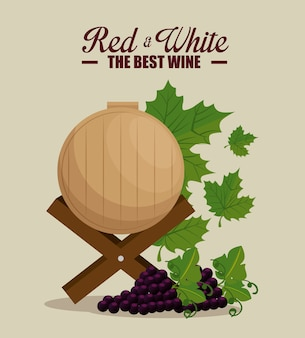 Barrique de vin rouge et raisins