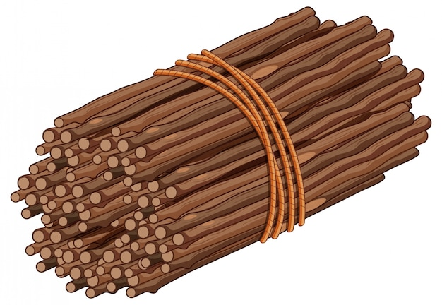 Bâton en bois sur un tas
