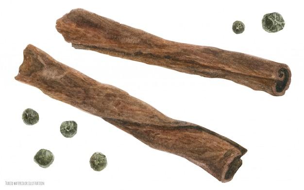 Bâtonnets d'écorce de cannelle et poivre blanc pour le vin chaud de noël