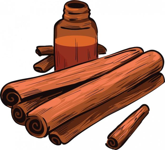 Bâtons secs de cannelle et bouteille avec illustration vectorielle de remède isolé. bandes d'écorce séchées, poudre d'écorce en bouteille en verre