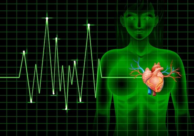 Battement de coeur de l'humain et graphique