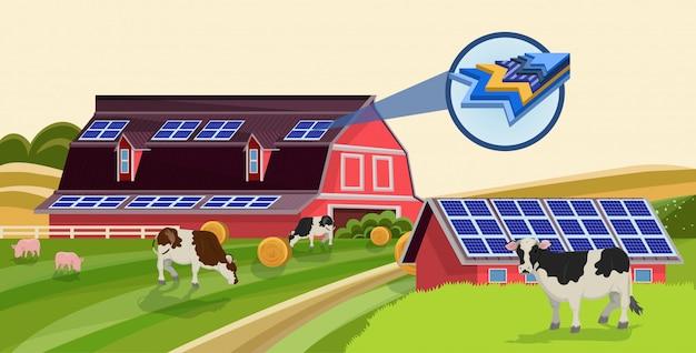 Batteries solaires sur l'énergie renouvelable de toit de ferme