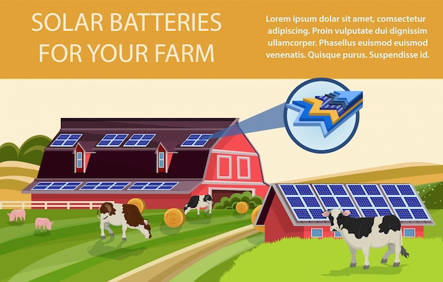 Batteries solaires pour ferme