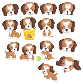 Beagles image set
