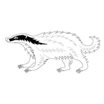 Beau blaireau héraldique illustration vectorielle dessinés à la main isolé sur blanc