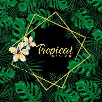 Beau cadre tropical avec des feuilles de monstera et des fleurs sur fond noir.