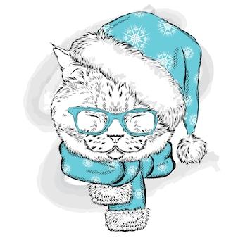 Beau chat dans un chapeau de noël et des lunettes.