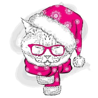Un beau chaton dans un chapeau de père noël, des lunettes et une écharpe.