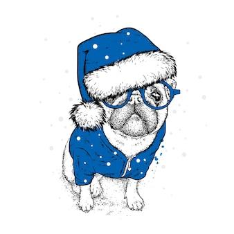 Beau chien dans un chapeau de noël et des vêtements du nouvel an