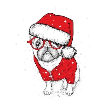 Beau chien avec des décorations et des vêtements de noël