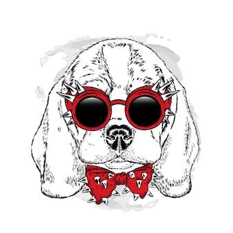 Beau chien hipster dans des vêtements élégants
