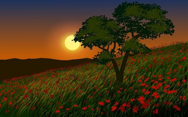 Beau coucher de soleil dans un champ de fleurs avec un arbre
